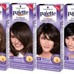 Краска для волос «Палет»: преимущества палитры